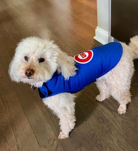 Load image into Gallery viewer, Canine Comfy, protective dog clothing including dog bodysuit and dog booties, the comfy alternative to the cone of shame