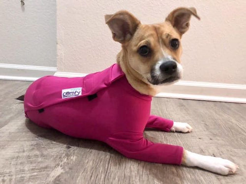 Protective, comfortable, soothing      Helpful, cute, fun     Cone substitute     Canine couture, dog apparel, fur babies, dog booties     Dry, clean, easy     Dignified, comfortable, less guilt for owner.     Dog bodysuit, protective dog gear, post surgery dog clothing, winter dog clothing, winter dog coat     Dog pajamas    	Dog anxiety, dog surgery, dog onesie, licking, cone alternative