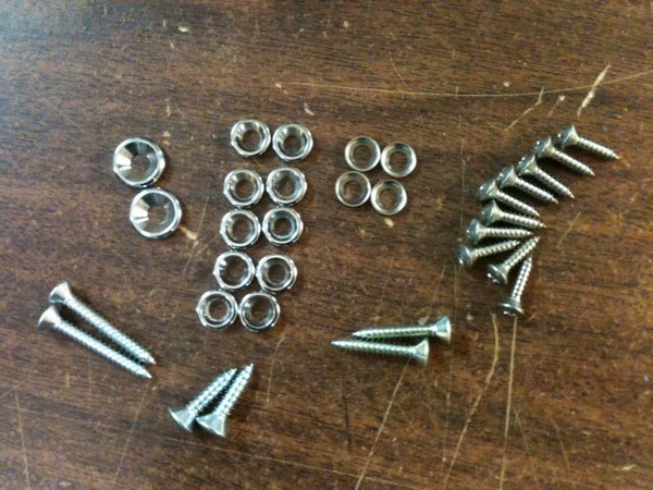 190SL Door Panel Screw & Chrome Washer Kit