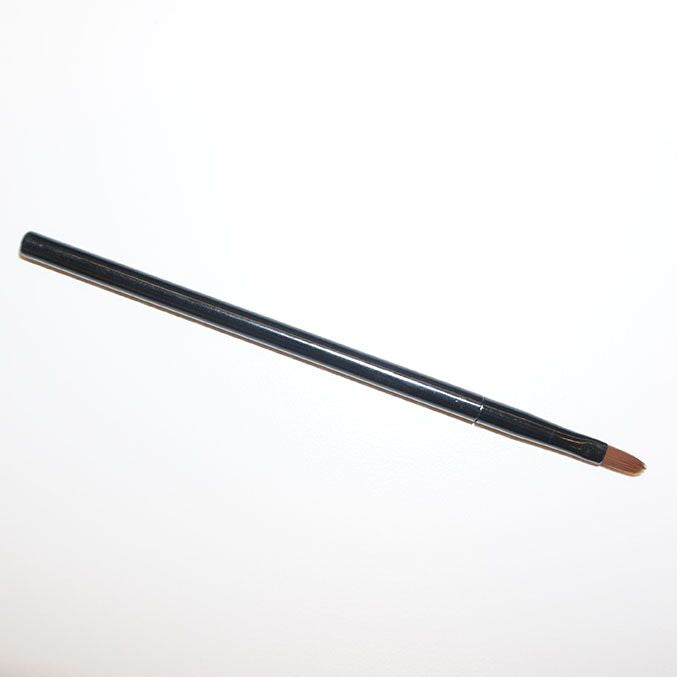 Mini Lip Brush