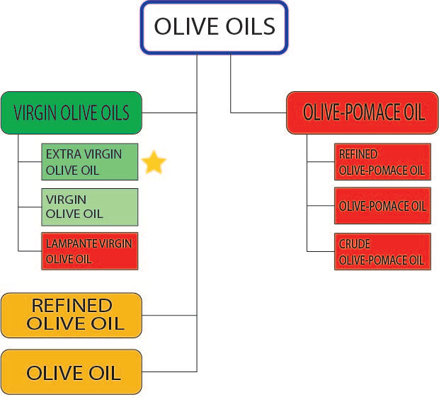 About Olive Oil: Part 4 - Classification of olive oils