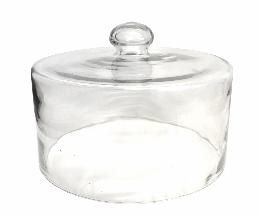 Set of 2 Glass Dome