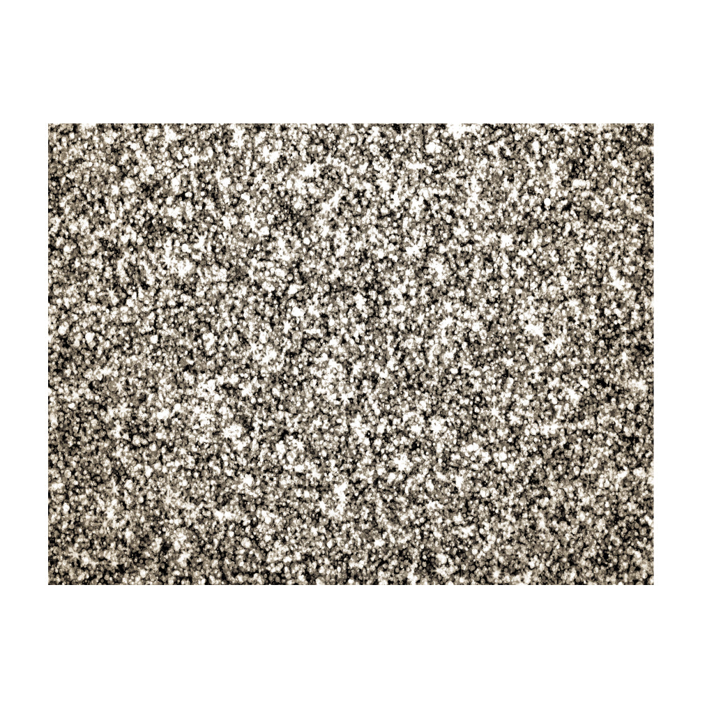 Silver Placemats (Glitter) Pack of 20 (Rectangle) - Place Matters
