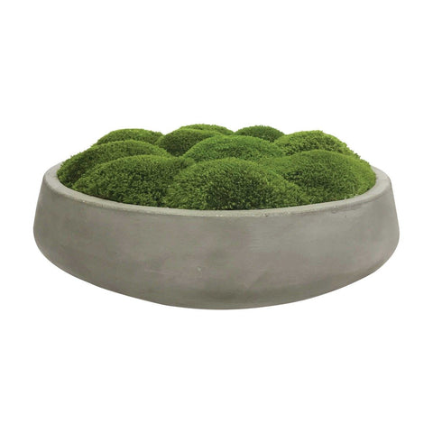 Preserved Mood Moss In Concrete Bowl - RSVP Style