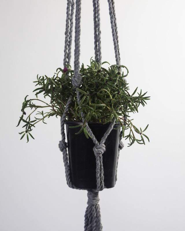 Love for Nica Bluefields Macrame Plant Holder in Gray