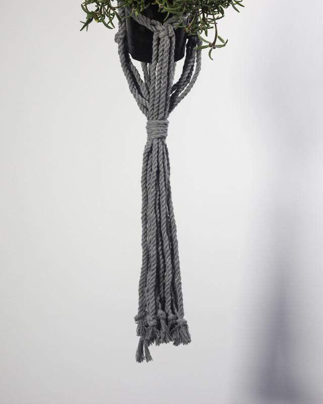 Love for Nica Mombacho Macrame Plant Holder in Gray