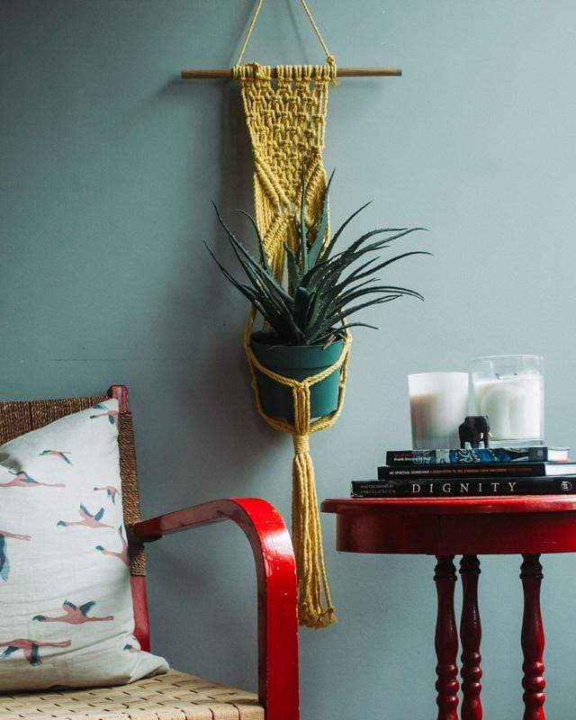 Love for Nica Mombacho Macrame Plant Holder in Yellow