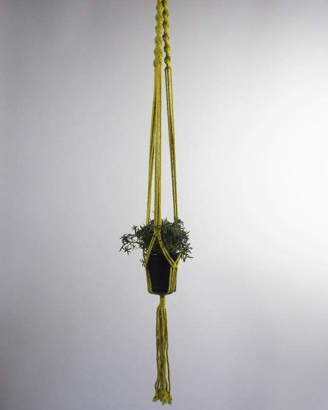 Love for Nica Santana Macrame Plant Holder in Yellow