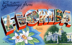 Greetings from Florida Postcards