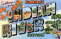 Greetings from Indian River Florida