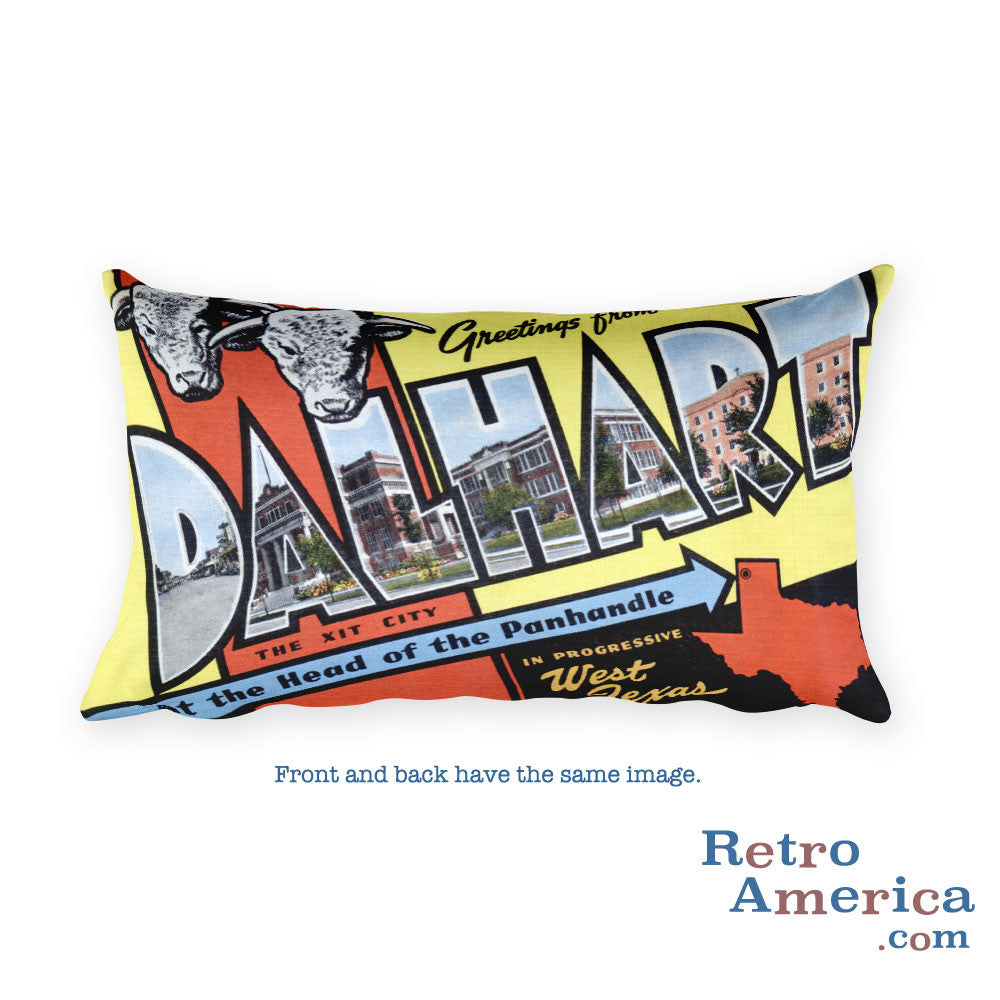 Greetings from Dalhart Texas Throw Pillow
