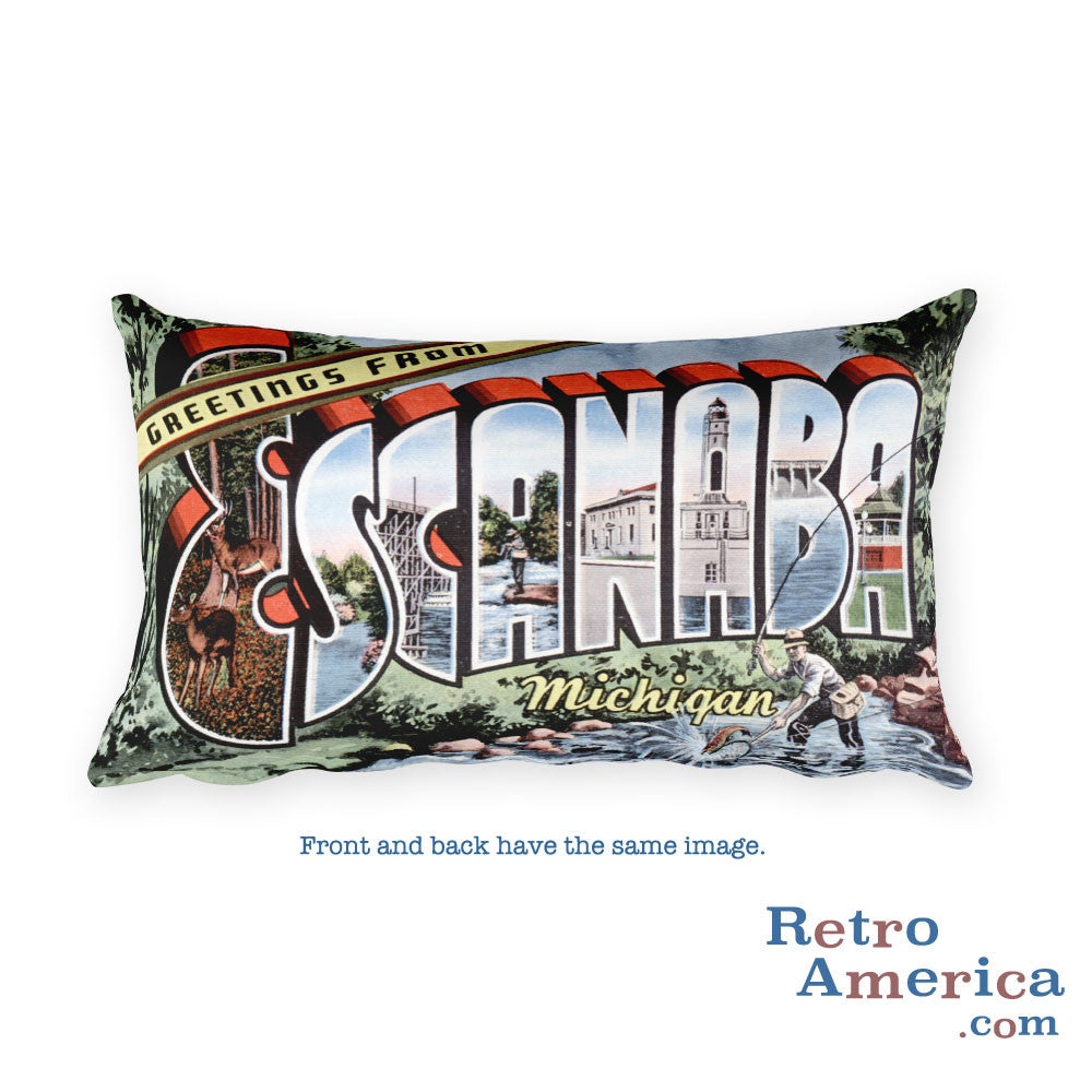 Greetings from Escanaba Michigan Throw Pillow