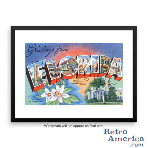 Greetings from Florida FL 1 Postcard Framed Wall Art