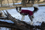 Jumppa - Fleece close coat for active dogs
