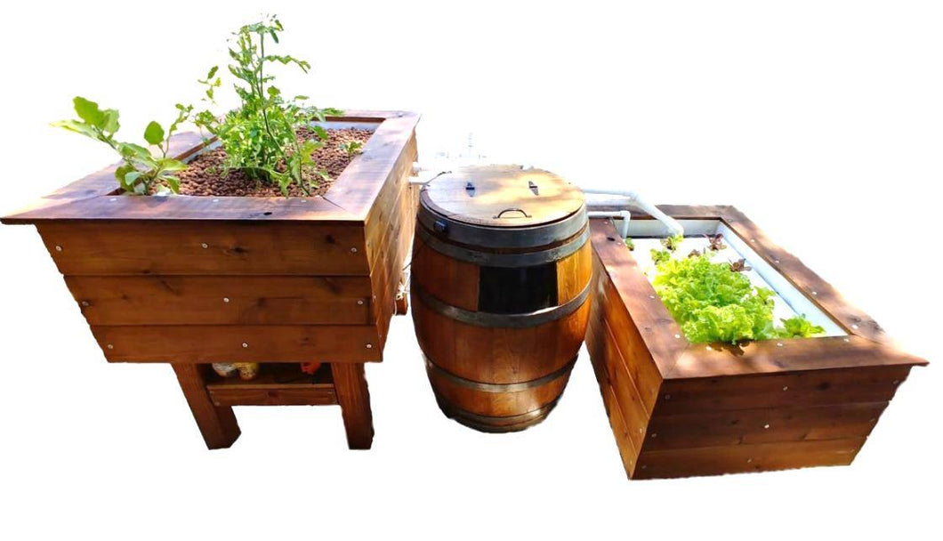 Basic Wine Barrel Aquaponics System