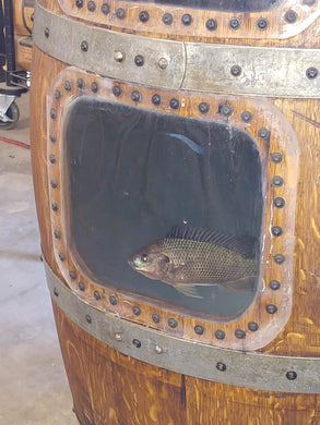 Fish Window in Wine Barrel