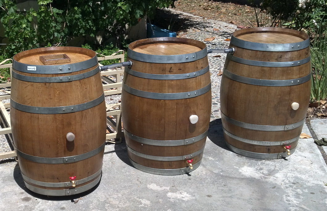 Rainbarrels chained