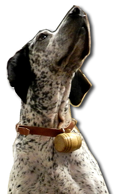 Rustic Barrel Dog Charm and Collar