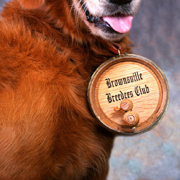 St Bernard Barrel - main