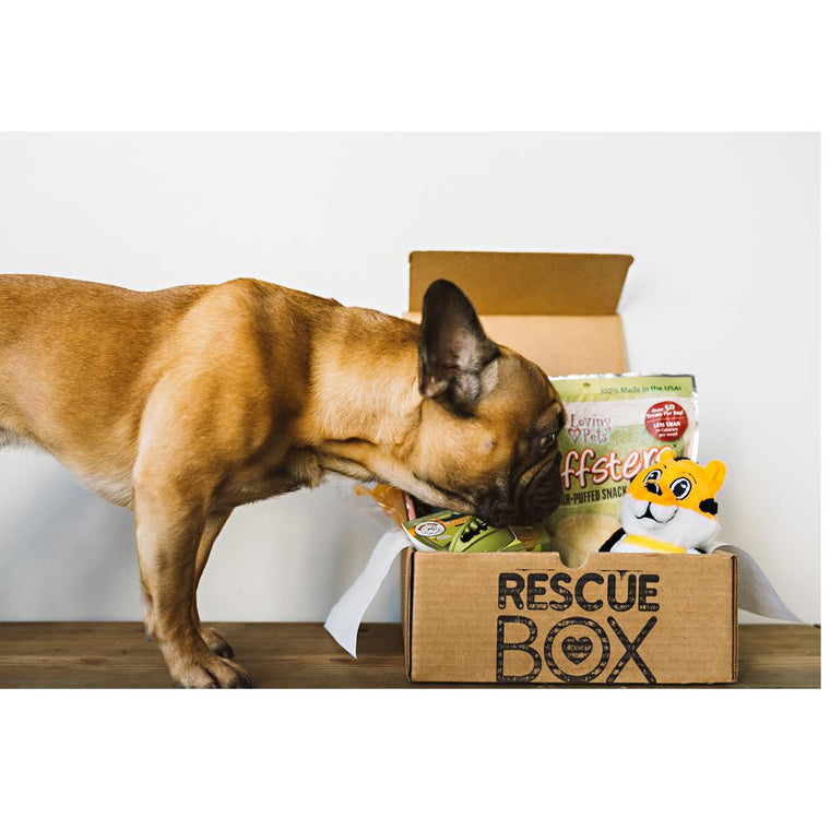RescueBox™ for Pets
