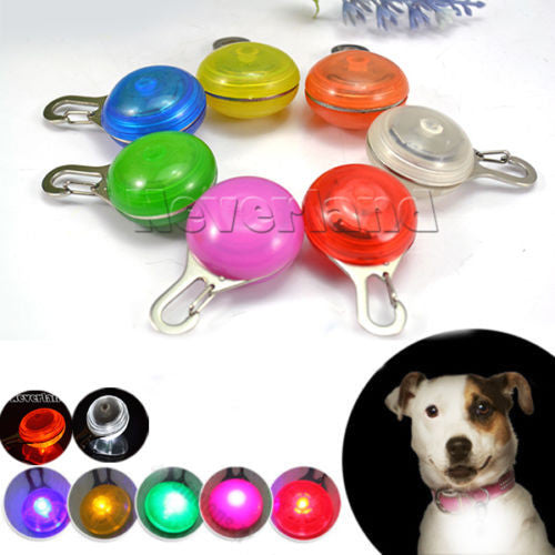 LED Safety Night Light for Collar, Push Button Switch