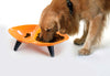 Melamine Couture Sculpture Double Food And Water Dog Bowl