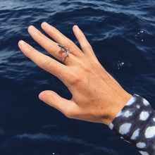 Grey Nurse Shark Ring
