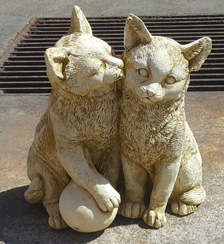Kissing Cats Concrete