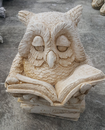Owl With Book Concrete