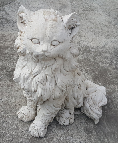 Fur Cat Concrete