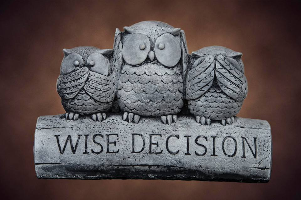 Wise Decision Owls grey