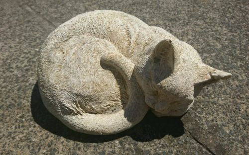 Sleeping Cat Concrete