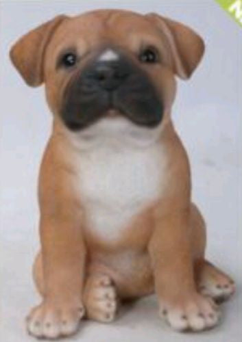 Sitting Staffordshire Puppy