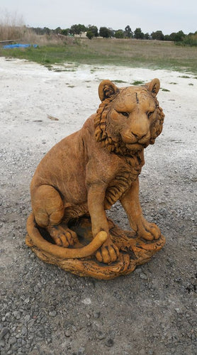 Large Tiger Concrete
