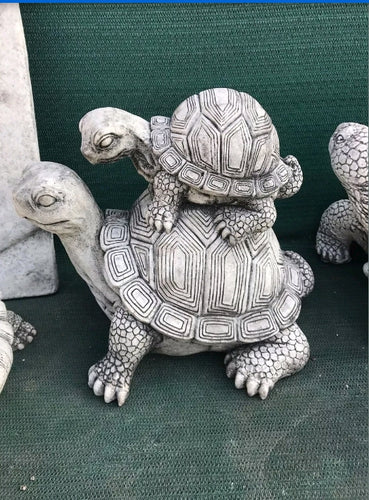 Turtle With Baby