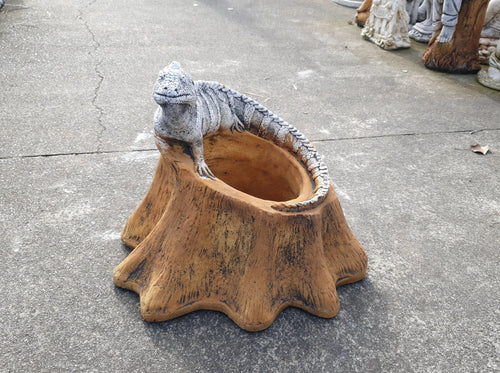Iguana On Planter 39cm