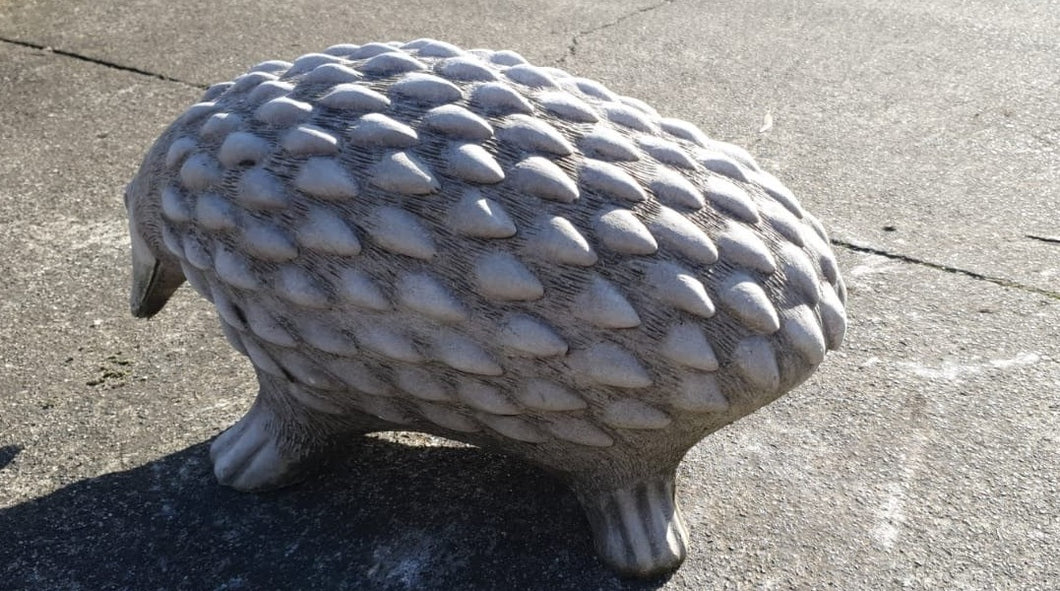 22cm Walking Hedgehog