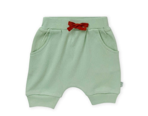 Animal Kingdom Celadon Green shorts