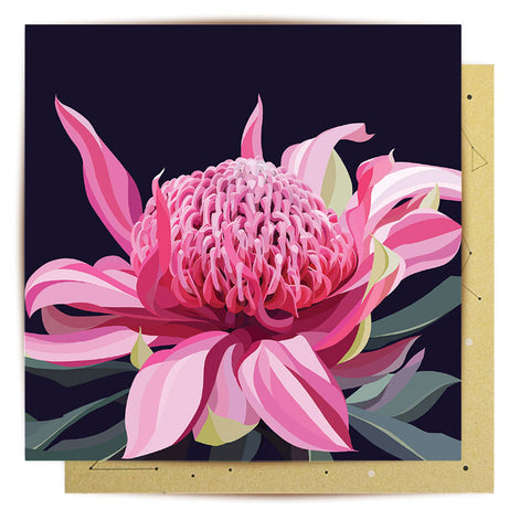 Lalaland - Waratah Bloom Greeting Card