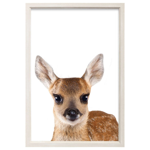 Splosh - Baby Collection, Baby Deer Framed Art