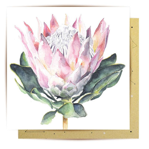 Lalaland - Protea Greeting Card