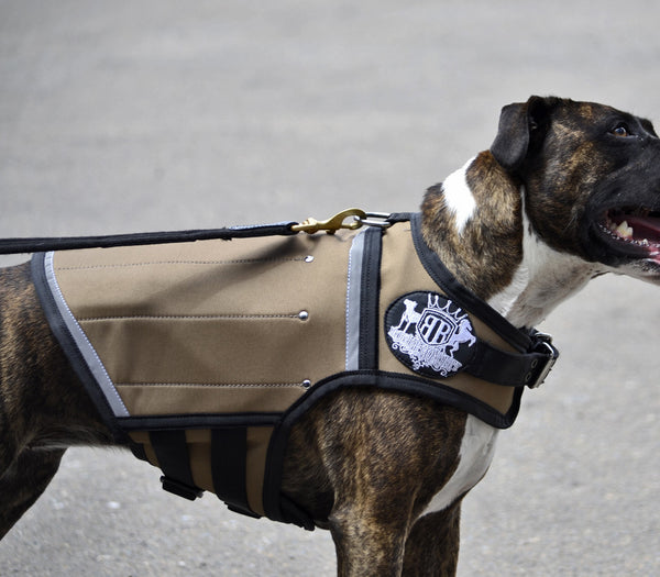 Rogue Royalty Canine Weight Vest