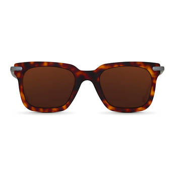 <strong>Winston - T</strong> <br> Havana / Silver Temples & Brown