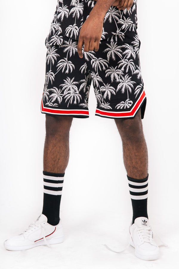 Palm Trees Shorts Black White