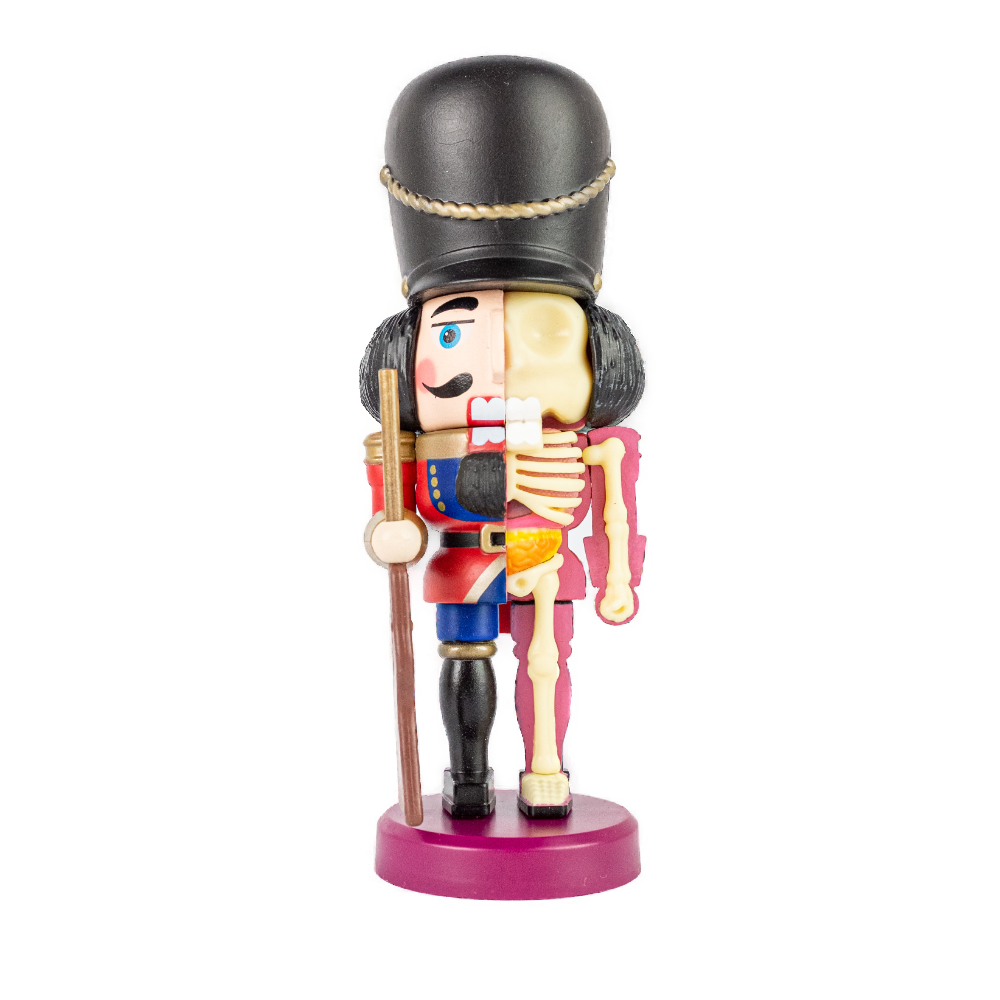 4D Master Nutcracker Guard Anatomy Figure Glow 10cm