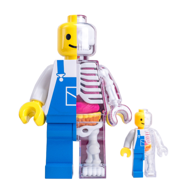 Jason Freeny Brick Man anatomy figure, worker