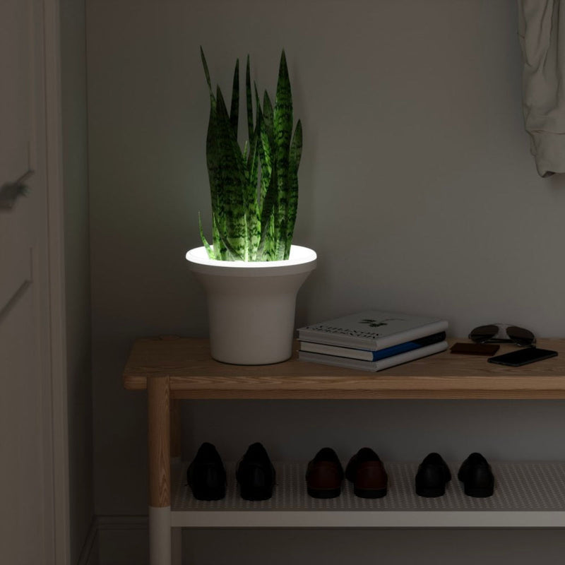 Umbr Ora Planter with LED Light