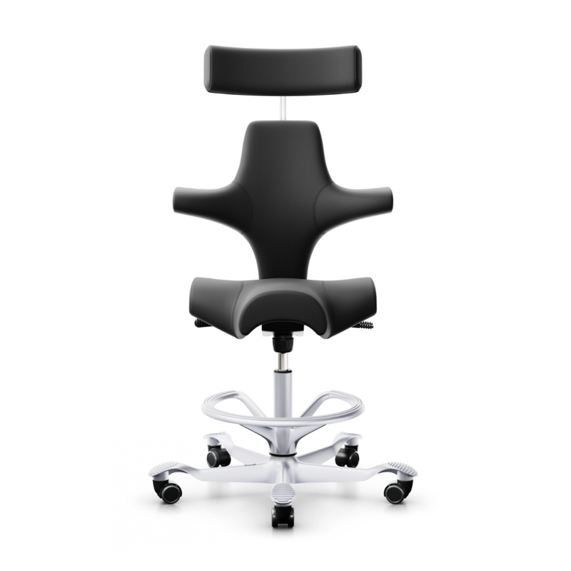 HÅG Capisco 8107 ergonomic chair, leather