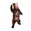 Fame Master Three-Dimensional Puzzle Anatomy Bear 29cm