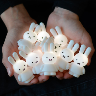 Miffy Light String